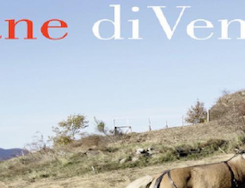 """""""PANE DI VENTO"""" A SAN FEDELE INTELVI IL 17 LUGLIO"""